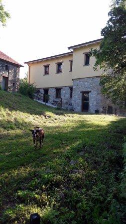 Badia Tedalda, Италия: Iris felice...