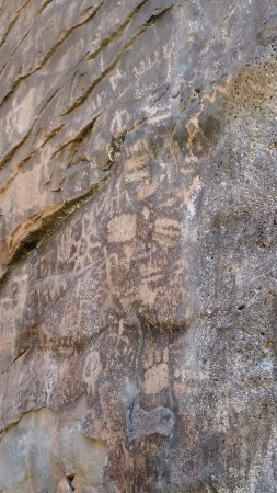 Williams, AZ: Petroglyphs