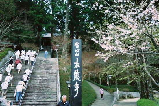 Anan, Japan: 境内の石段