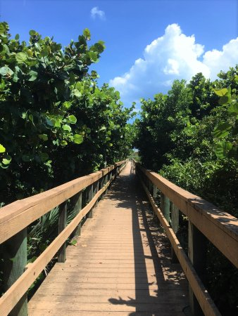 Barrier Island Center : Boardwalk to beach