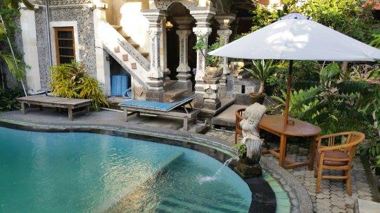 Sania's House Bungalows: La piscine dont nous avons profité 3 fois par jours