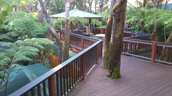The Guest Cottages at Volcano Acres Tree House : 20160713_063823_large.jpg