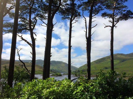 Leenane, Ιρλανδία: Avenue to Aasleagh Lodge