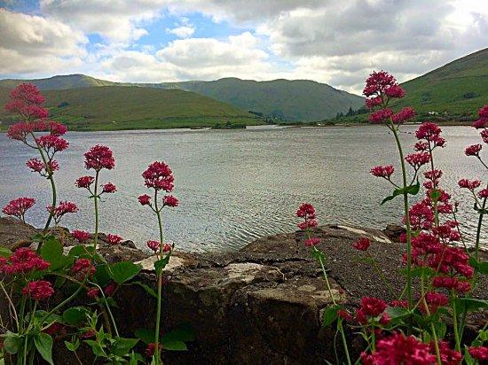 Leenane, Ιρλανδία: Killary Fjord