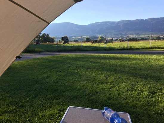 Camping Solothurn TCS: Fine view!