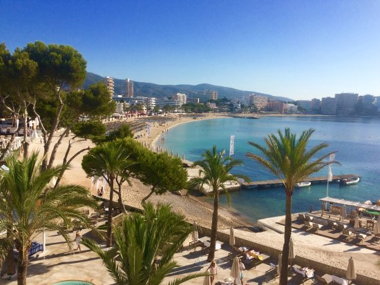 photo4 jpg picture of melia calvia beach magaluf tripadvisor rh tripadvisor co za