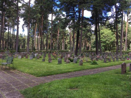 Skogskyrkogården : photo2.jpg