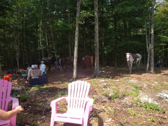 Adirondack Equine Center: Our lunch area at the top of the mountain.