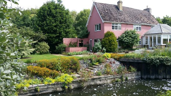 West Stow, UK: Plant (and cake) sales at the lovely Fuller's Mill Gardens