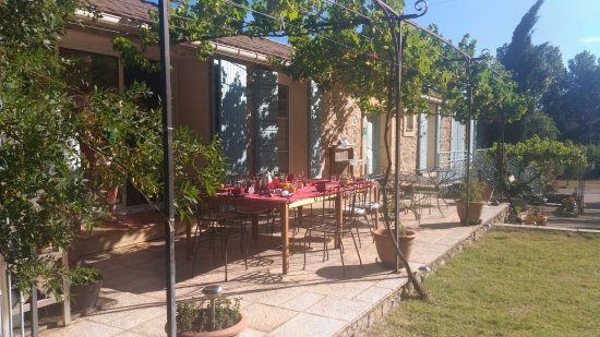 Pouzols-Minervois, France: Terrasse ombragée pour un petit déjeuner tout en douceur.
