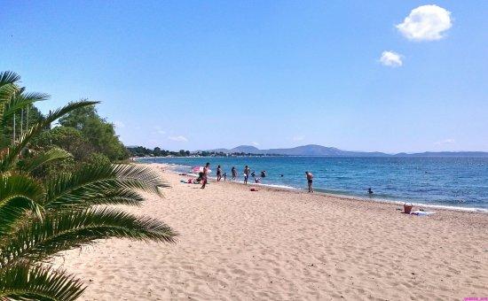 Marathon Beach View From Nea Macri To