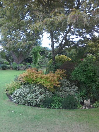 Naturalistic grouping of trees and shrubs - Picture of Ashwood ...