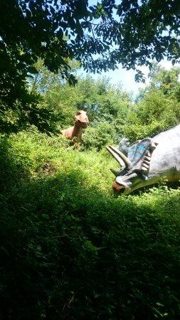 Dinosaur World: DSC_1686_large.jpg