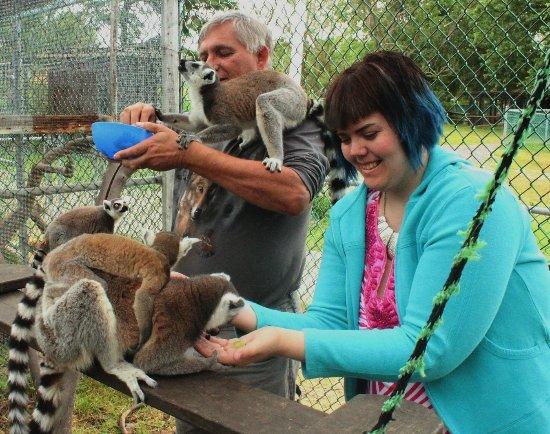 Orono, كندا: together feeding