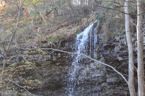 LaFayette, Geórgia: Falls