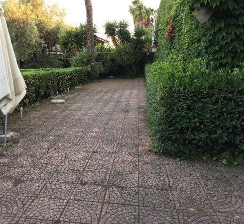 Pedara, Italia: Dal primo Luglio abbiamo aperto il giardino.