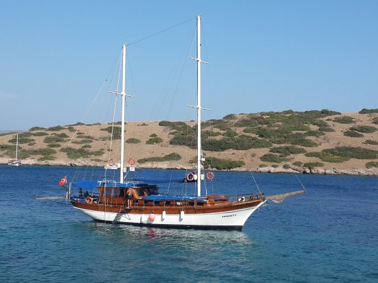 Serenity  Boat Trip