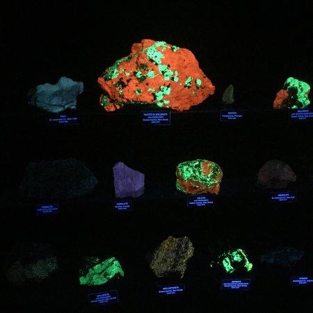 Bob Campbell Geology Museum : photo0.jpg