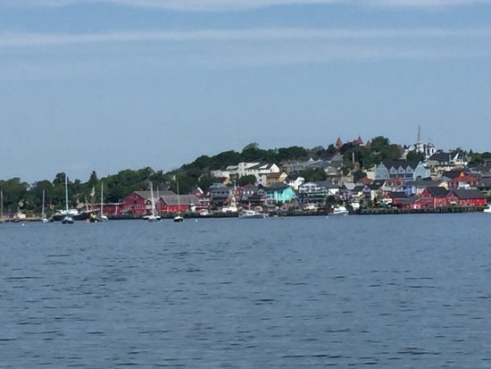 Star Charters Day Tour: photo0.jpg
