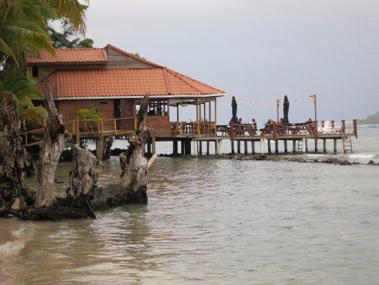 Carenero Island, Panamá: Bibi's