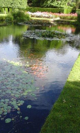 Burwash, UK: Pond