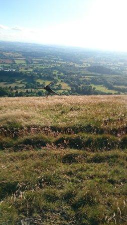 Malvern Hills: DSC_2211_large.jpg