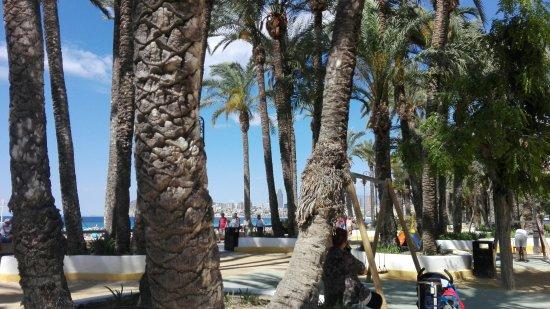 Parque de Elche: Junto a la playa