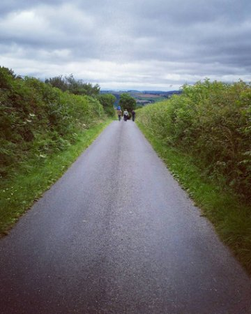Bishop's Castle, UK : Endless, quiet country lanes are to be found everywhere, very idyllic.