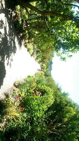 promenade fleurie - picture of promenade fleurie, mimizan