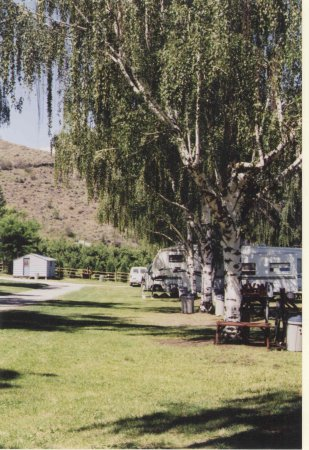Spectacle Lake Resort: Shady, treed campground