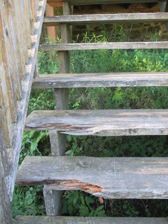 Eastman, แคนาดา: Escalier qui part du patio allant vers le terrain