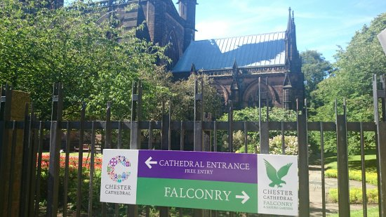 Chester Cathedral Falconry And Nature Gardens