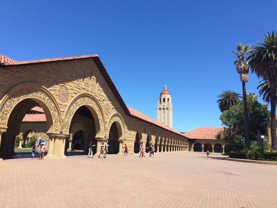 Пало-Альто, Калифорния: photo3.jpg