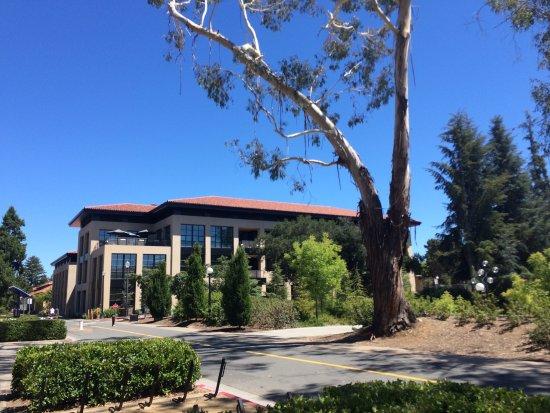 Palo Alto, CA: photo5.jpg