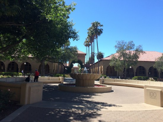 Palo Alto, CA: photo9.jpg
