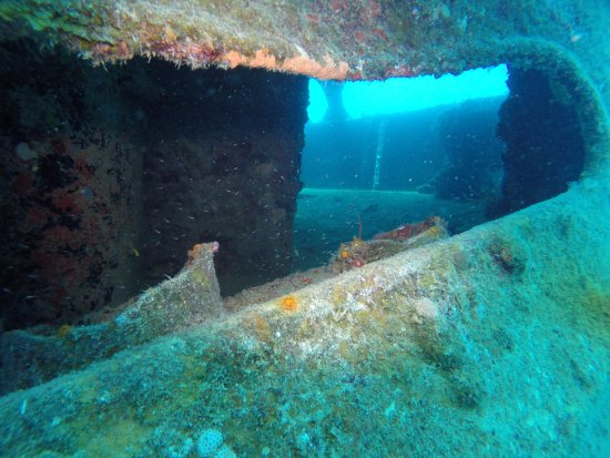 Pro Divers, Inc.: Cool shot through the side..