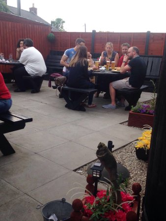 Raglan, UK: Lovely enclosed beer garden at the rear of the ship