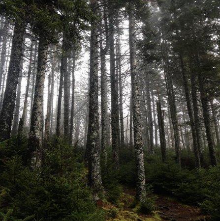 Canning, كندا: Blomidon PP in winter