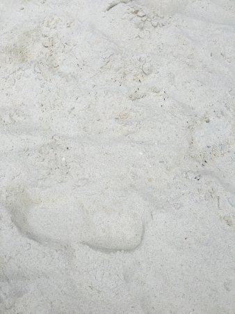 Entalula Island: photo2.jpg