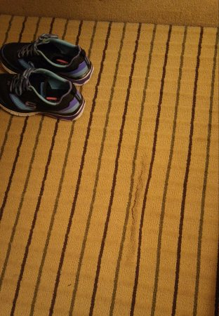 Quality Inn: Worn and stained carpet