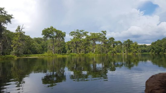 Edward Ball Wakulla Springs State Park: 20160717_160356_large.jpg