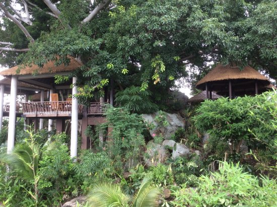 Anantara Lawana Koh Samui Resort: Amazing relaxed place. If I was any more relaxed my heart would have stopped.