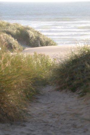 Manzanita, OR: The ocean is in sight!