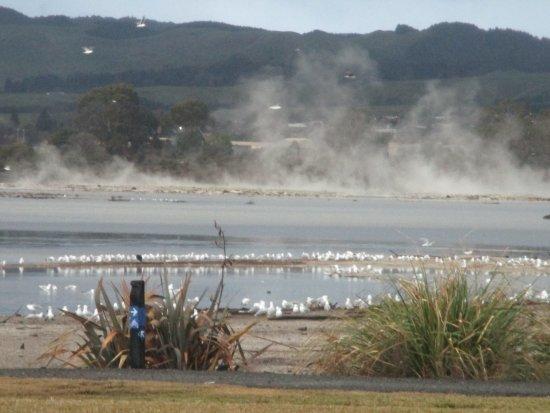 Sudima Hotel Lake Rotorua: Lake view