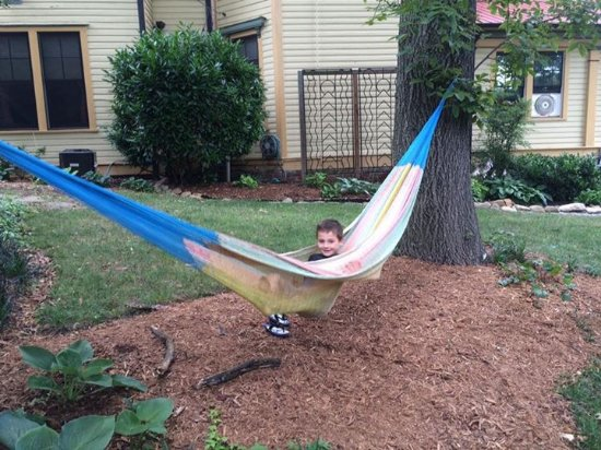 Hill House Bed & Breakfast: hammock