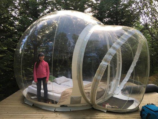 Sanibel Island Hotels: Updated 2018 Cottage Reviews