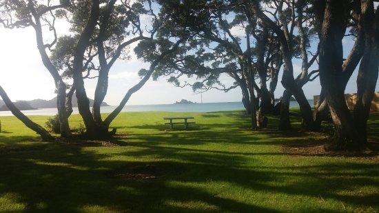 Oakura, Nueva Zelanda: 20160524_111044_large.jpg