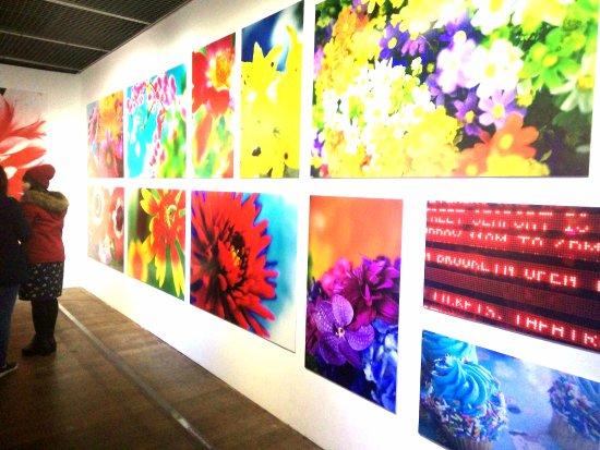 Museum of Contemporary Arts : 蜷川實花展