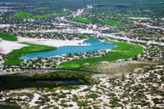The Golf Club at El Mogote : 16th and 17th surround giant whale pond