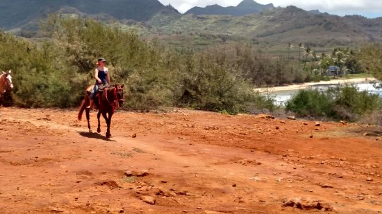 CJM Country Stables: Riding back from Gillins Beach